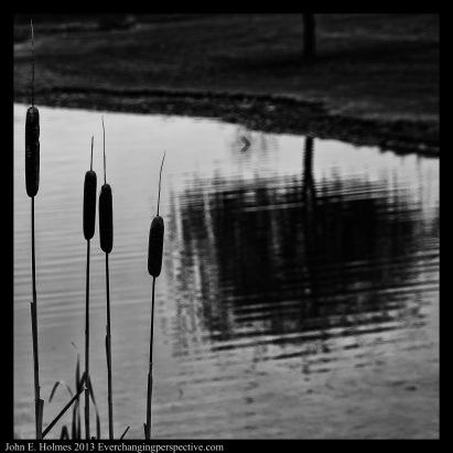 131121-142840_Plum Creek-Edit-3