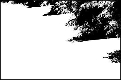 150207-125224_Plum Creek-Edit