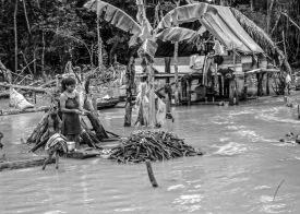 060331-074545-Amazon River