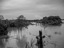 060401-073121-Amazon River