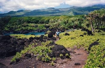200703-224808-Maui 1993
